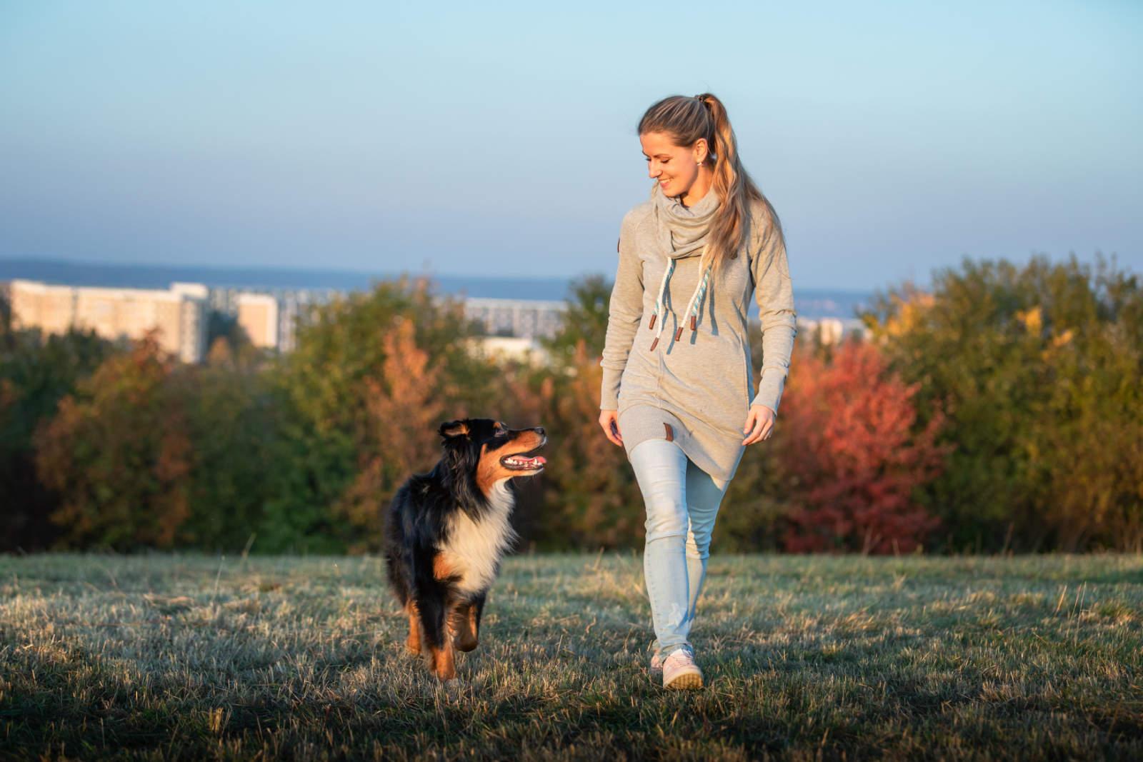 Hundetrainerin Dresden