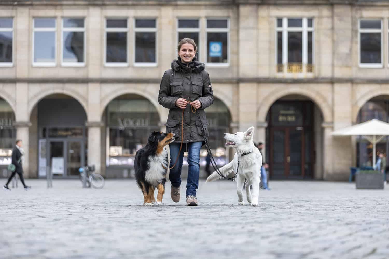 Hundeschule Hundetrainer Dresden Nancy Wendler Dresden mit Hund erleben