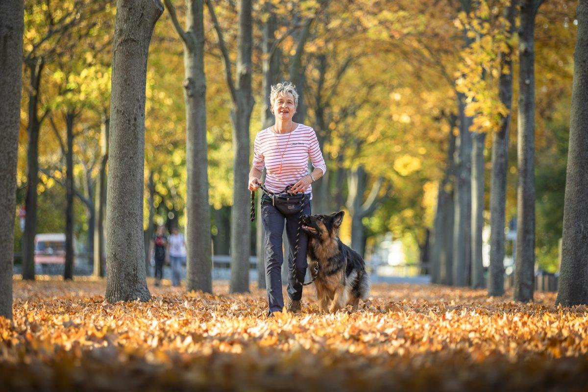 Hundetrainer Dresden Alltagstraining