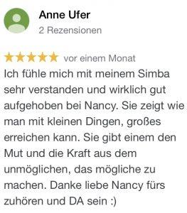 Hundetrainer Dresden Bewertungen