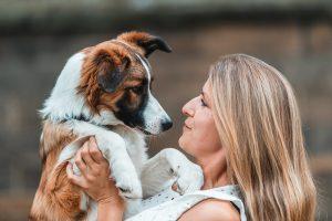 Hundeschule Dresden Welpenschule Nancy Wendler