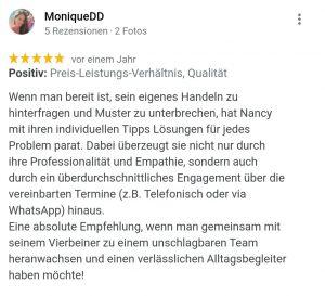 Hundeschule Chemnitz Nancy Wendler